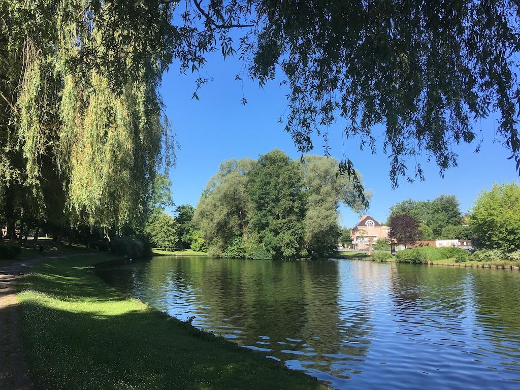 Het zomert in Hoeilaart (foto credits: Gilberte Marchand)