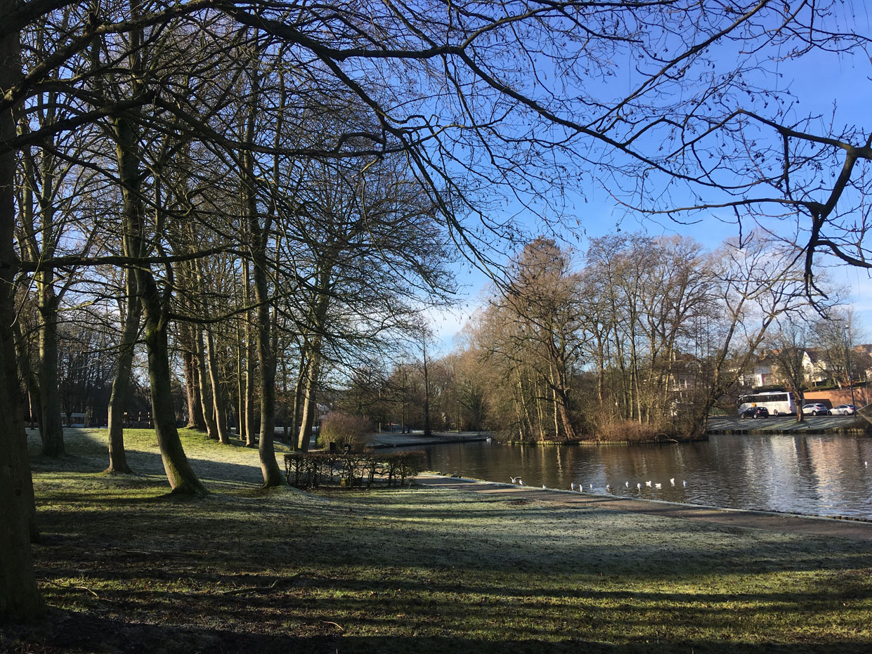 Ruusbroecpark in de winter (foto credits: Gilberte Marchand)