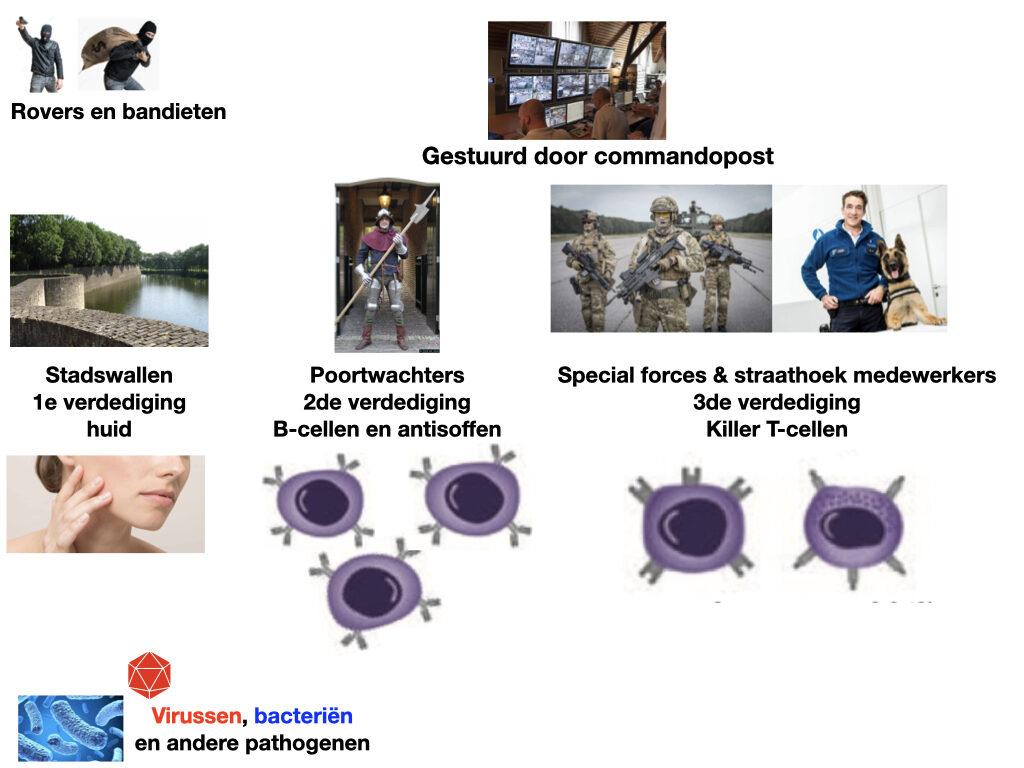 Vaccinatiestrategie (collage: Serge Muyldermans)